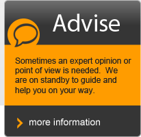 advise, guide and consult